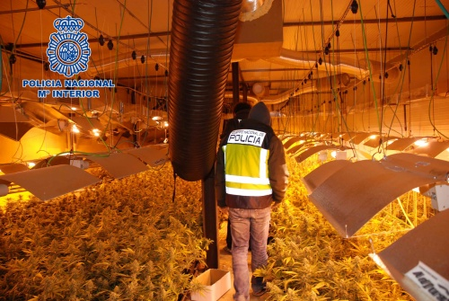 Nave archives for Produccion marihuana interior